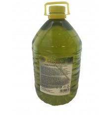 Skystis langų plovimo vasarinis, 5 litrai PET citrinų kv.