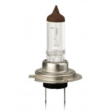 Lemputė H7 24V  70W Vecta